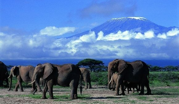 Overland Adventure: Nairobi to South Africa
