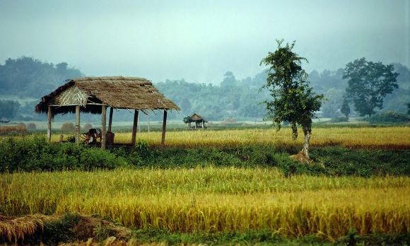 Malerische Landschaft mit reetgedecktem Unterstand bei den Shan-Dörfern in Myanmar