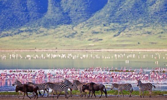 tansania-reisen-ngorongoro