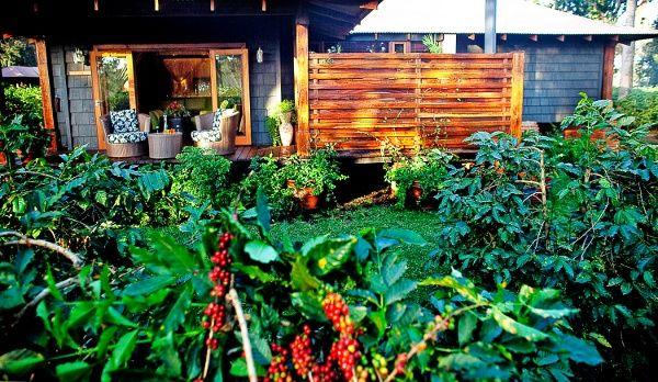 Die Arusha Coffee Lodge