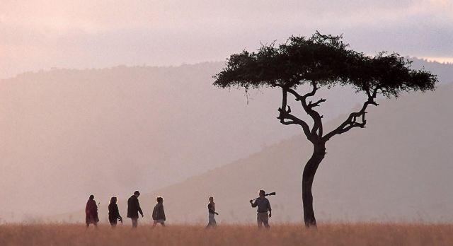 Africa Safaris: Top 5 things to do at Okavango Delta