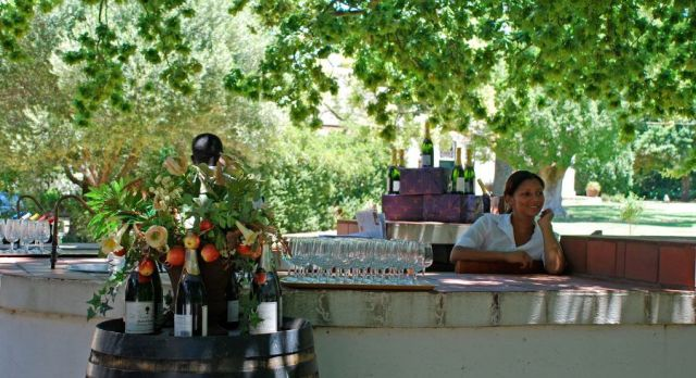 Famous South Africa Wines Africa Trip