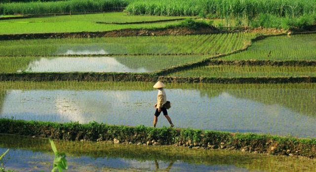 Enchanting Travel Vietanam Tours Pu Luong Nature Reserve - Vietnam Destinations