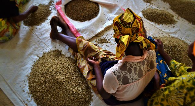 We recommend: Join a women's cooperative in Rwanda and help bake delicious bread using local ingredients without artificial additives. You also can accompany the women to help them sell their products in nearby village markets.