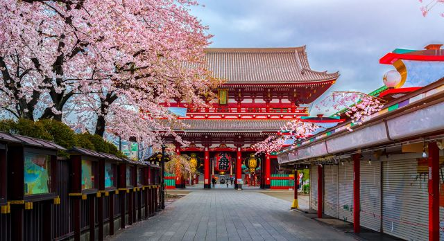 Visit one of Japan's many beautiful temples.