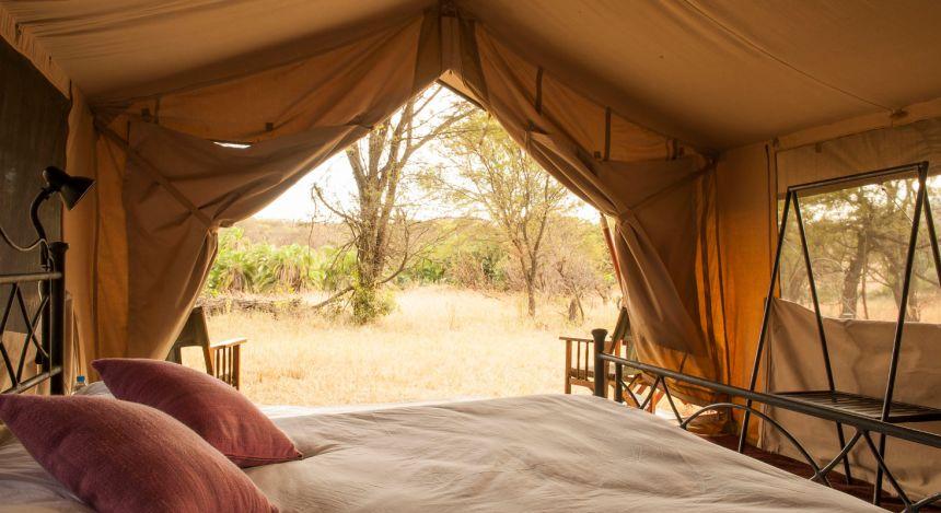 Blick vom Bett aus dem Zelt hinaus