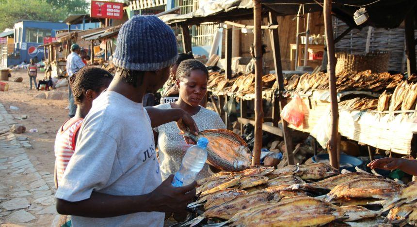 Fischstand auf einem Markt in Sambia