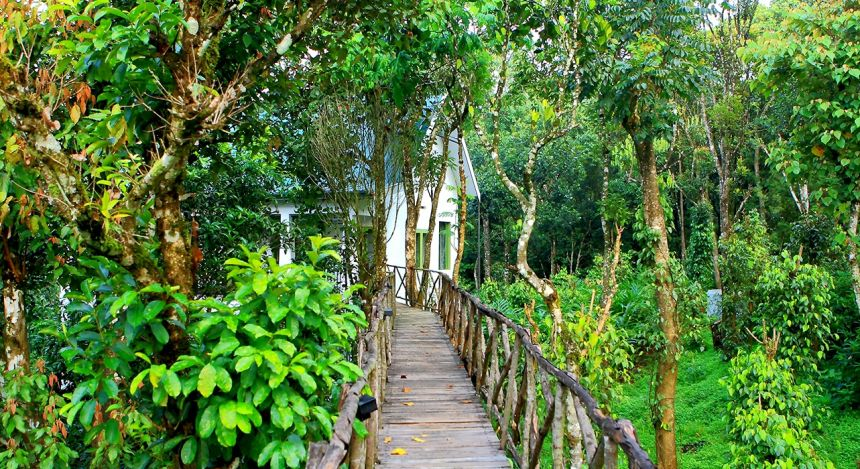 Enchanting Travels - South India Tours - Tekkady - Aanavilasam Luxury Plantation - bridge