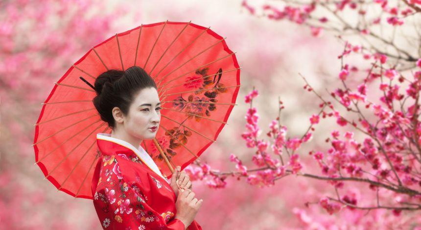 Ikonische Japan-Motiva: Eine Geisha und blühende Kirschblüten