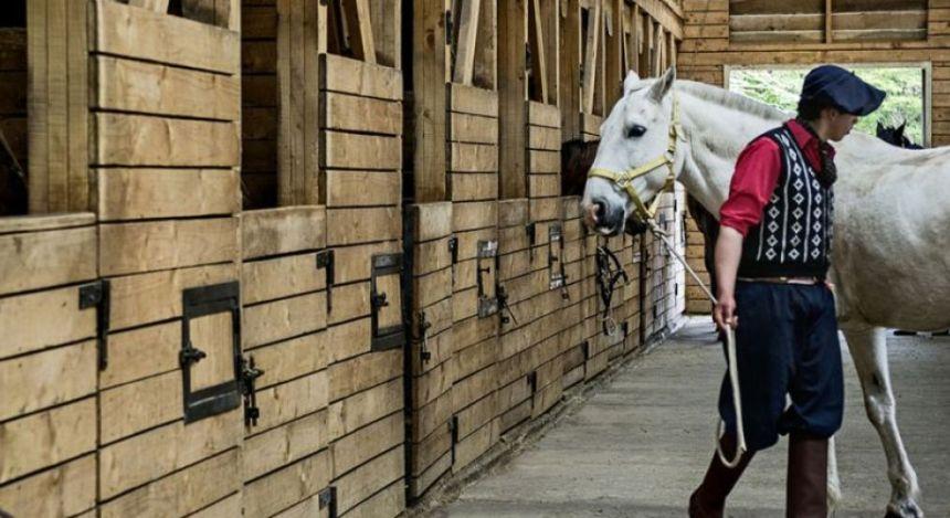 Gaucho und Pferd im Stall