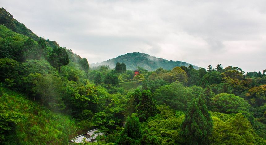 National park around Kiyomizu temple