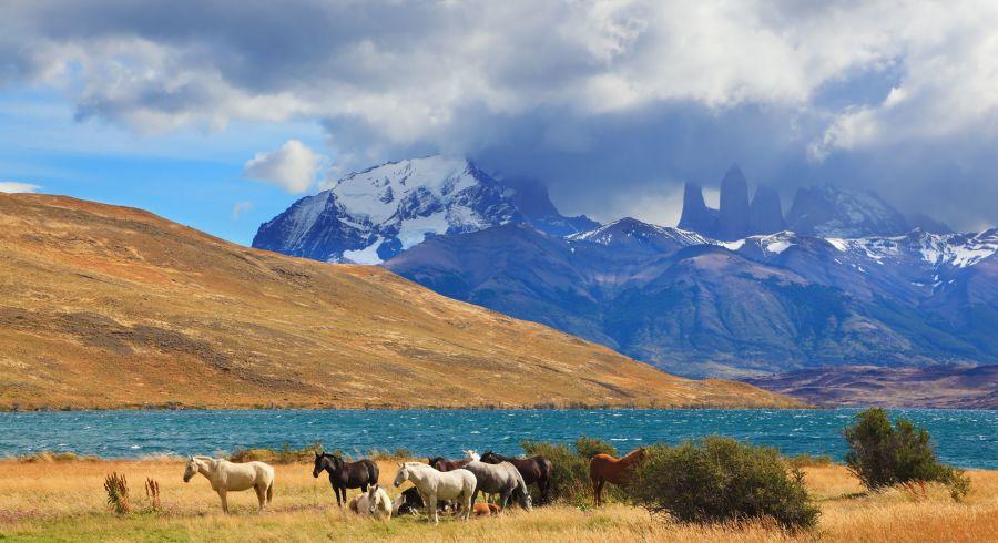 Schneebedeckte Gipfel und weite Landschaften in Patagonien