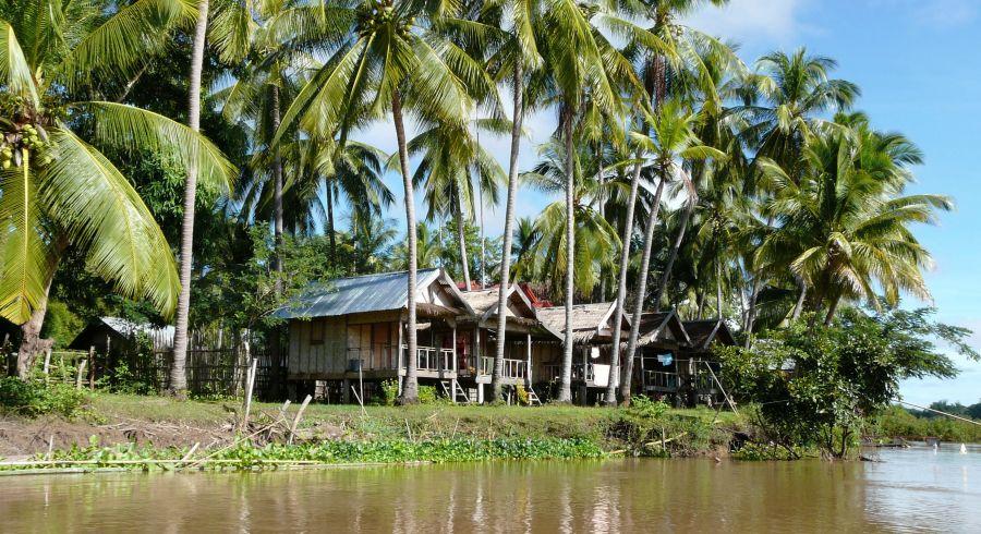 Hütten und Palmen an einem Flussufer in Laos