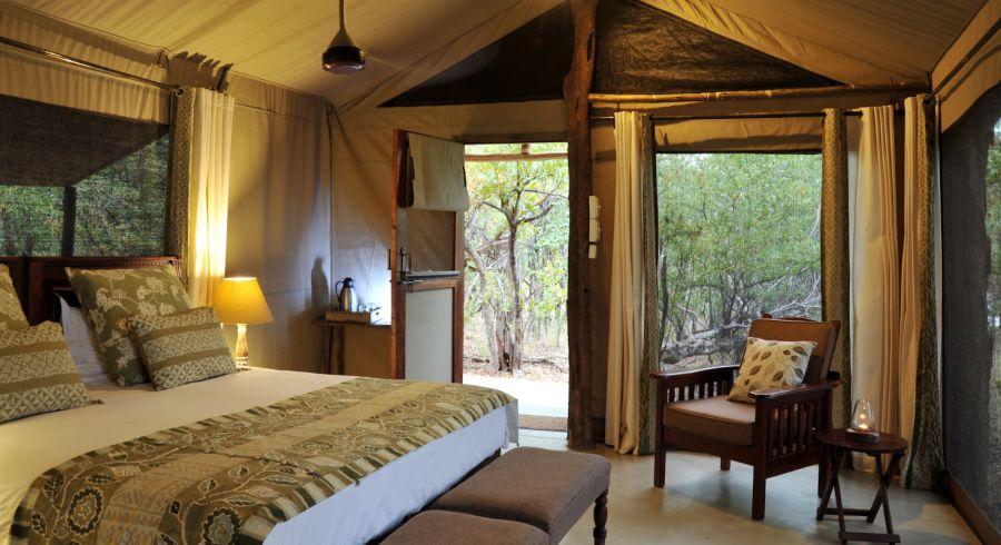 Lodge-Zelt Innen mit Wald vor der Tür