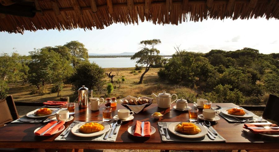 Your Day on Safari in Africa