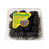 Driscoll's Blackberries