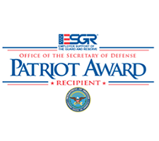 Patriot Award Icon