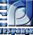 Rapid Response Monitoring Service Logo