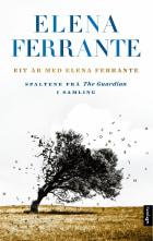 Eit år med Elena Ferrante