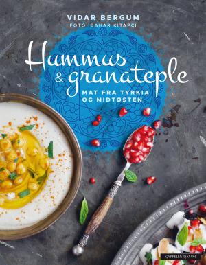 Hummus & granateple