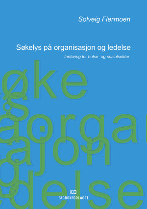 Søkelys på organisasjon og ledelse