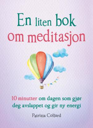 En liten bok om meditasjon