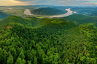 The Bend in the Danube River Surrounded by Trees