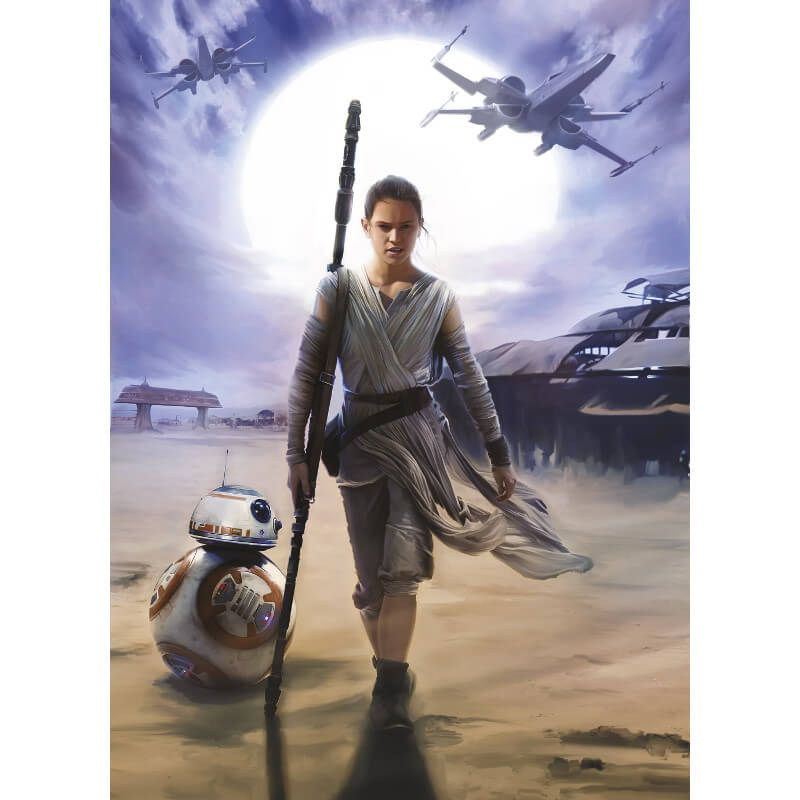Komar Star Wars Rey Wall Mural   4 448 Part 73