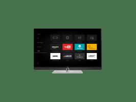 Loewe TV Art 48