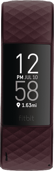 Rosenholz Fitbit Charge 4.1