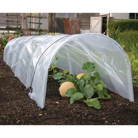 Giant Easy Poly Tunnels from Haxnicks