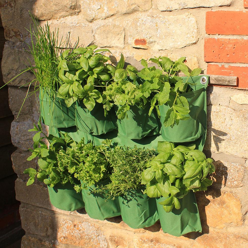 herb wall planter haxnicks
