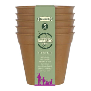 "5"" Bamboo Pots - Terracotta"