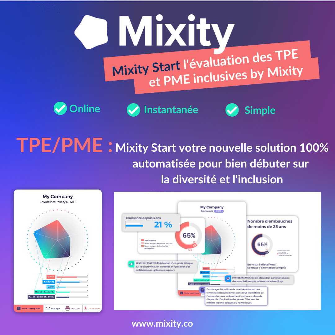 Audit Diversité et Inclusion : Mixity lance Mixity Start dédiée aux TPE/PME