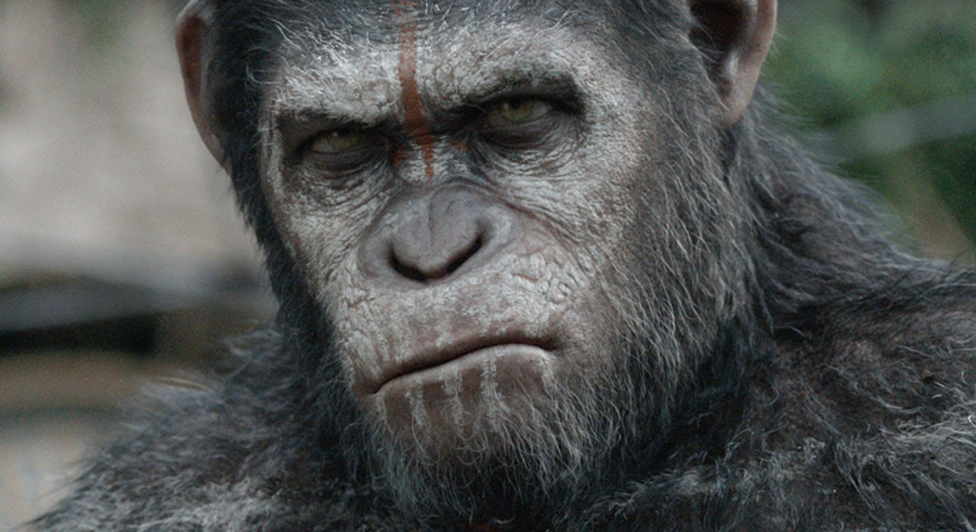 Podcast | Review of the War for the Planet of the Apes