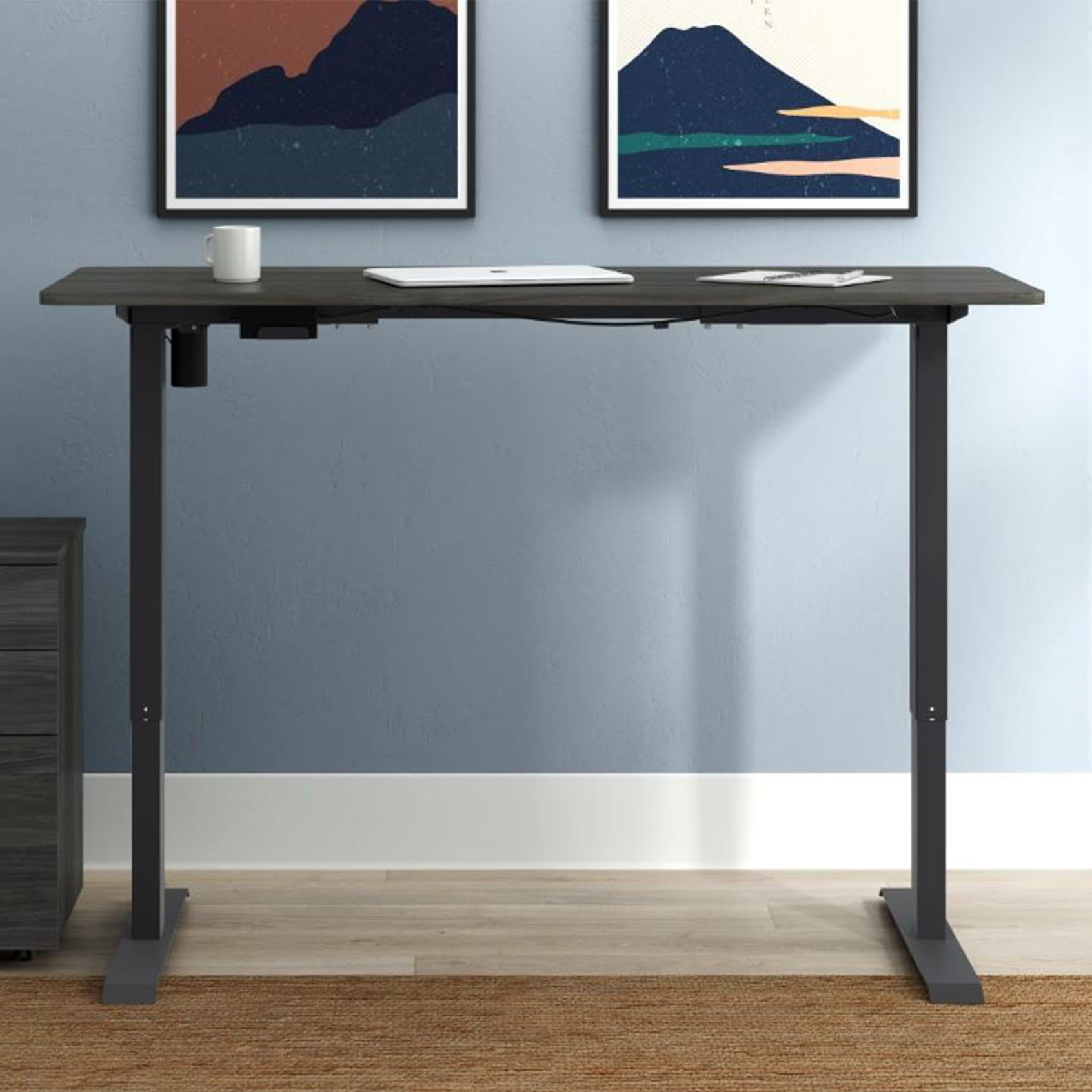 Height Adjustable Desk with 24
