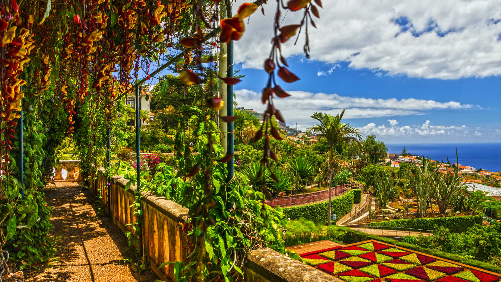 Hotel Alto Lido Funchal Booking