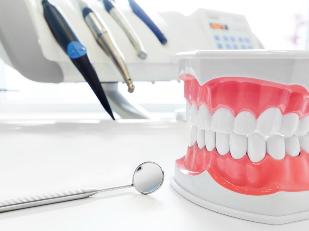 instruments dentaires et machoire plastique