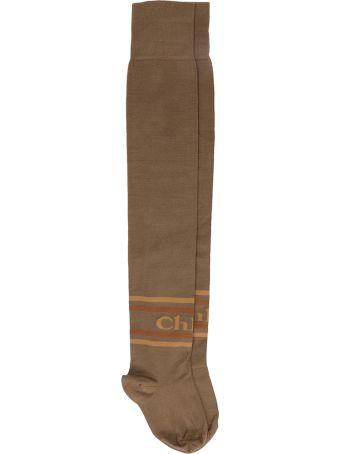 Chloé Thigh-high Chlo? Socks In Scottish-thread Cotton