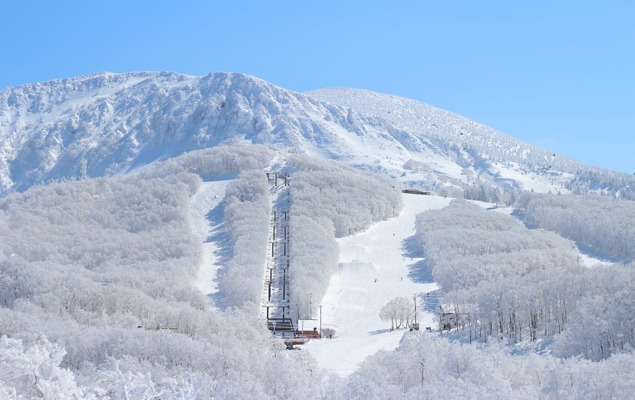 Ski at Zao-WIN
