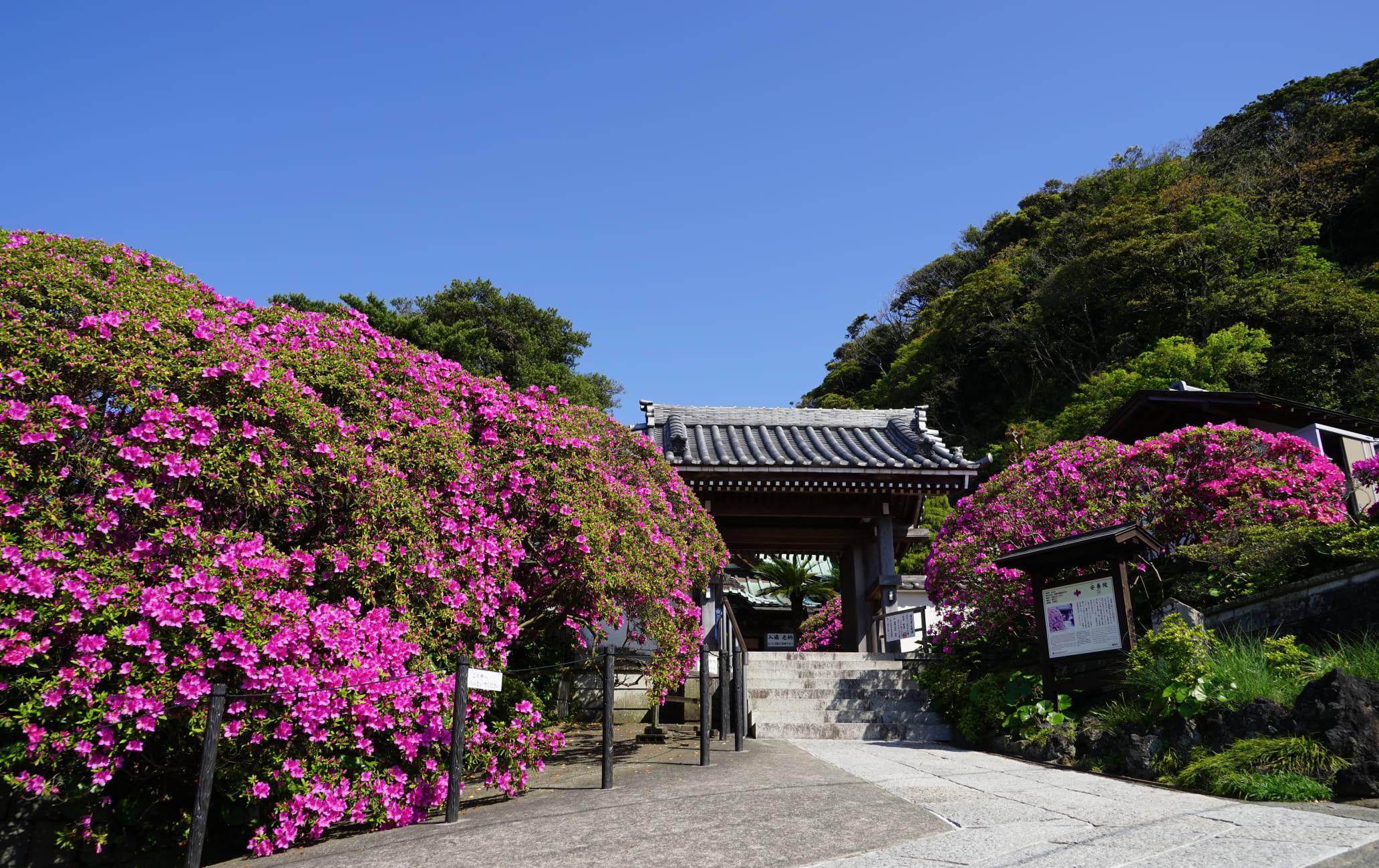 An'yo-in Temple