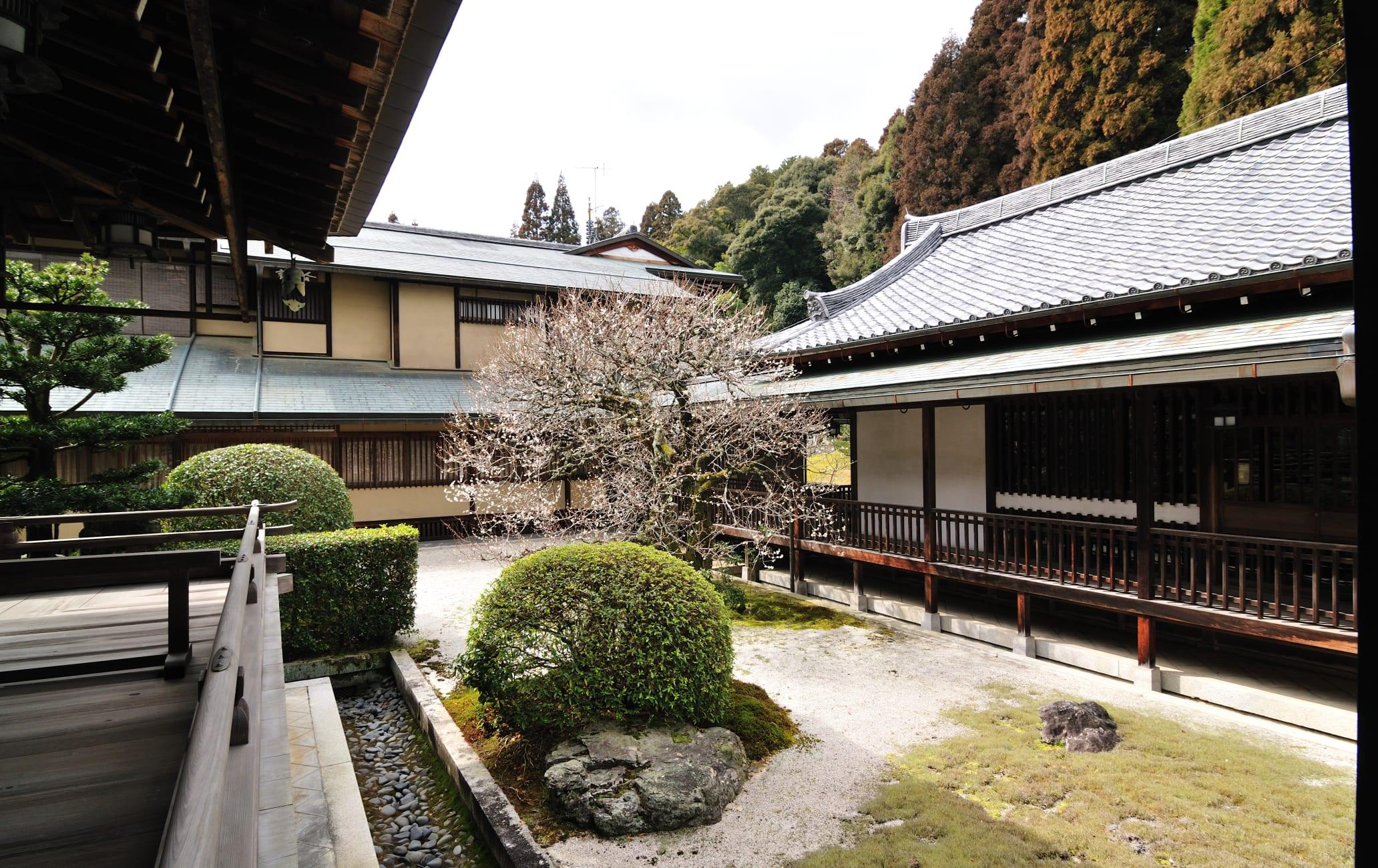 sagano & arashi-yama area