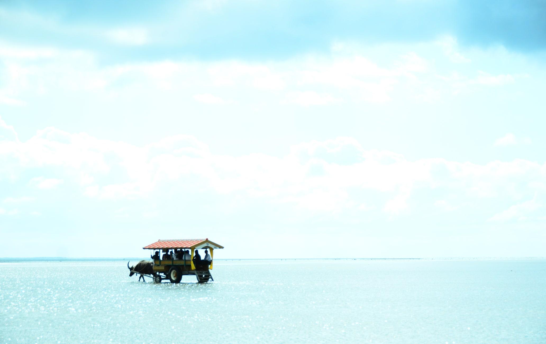 Yubu Island on a cow carts