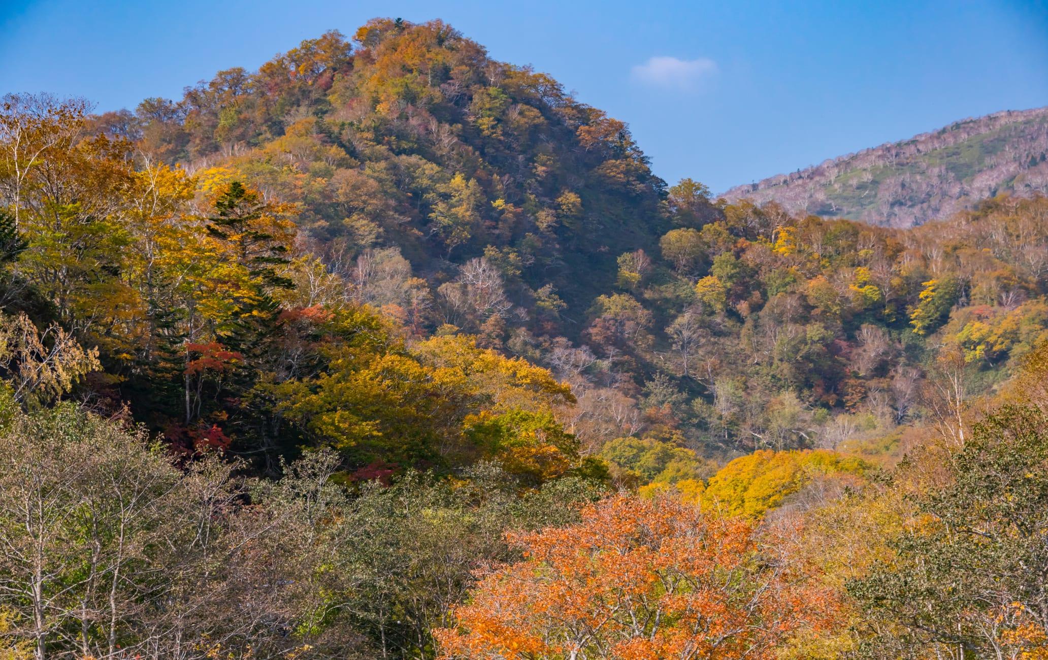 Shiretoko Kokuritsu-koen -National Park Rausu Visitors Center