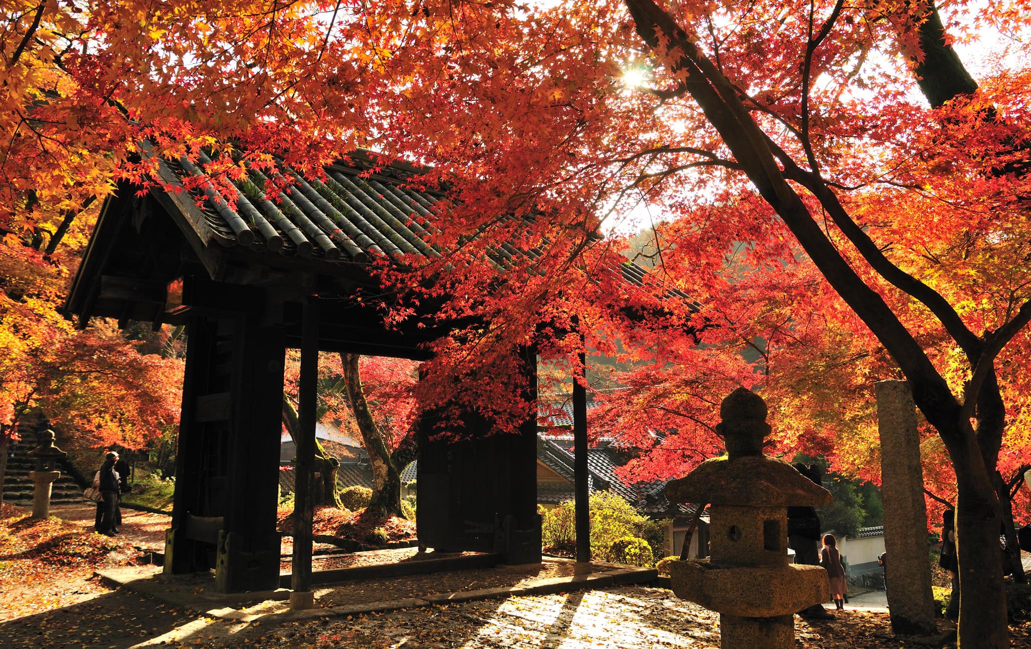 Akizuki Castle