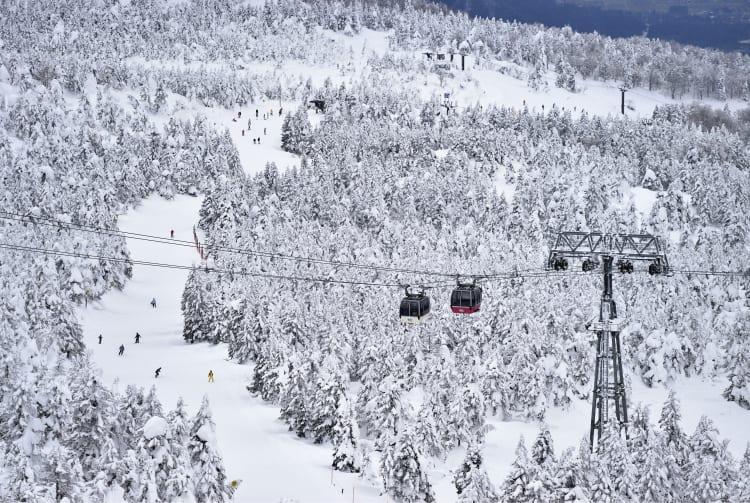 Zao Ski Resort