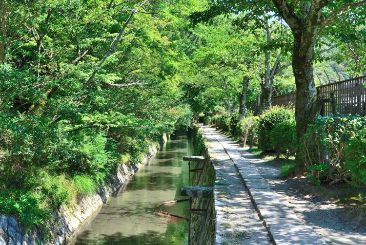 central kyoto