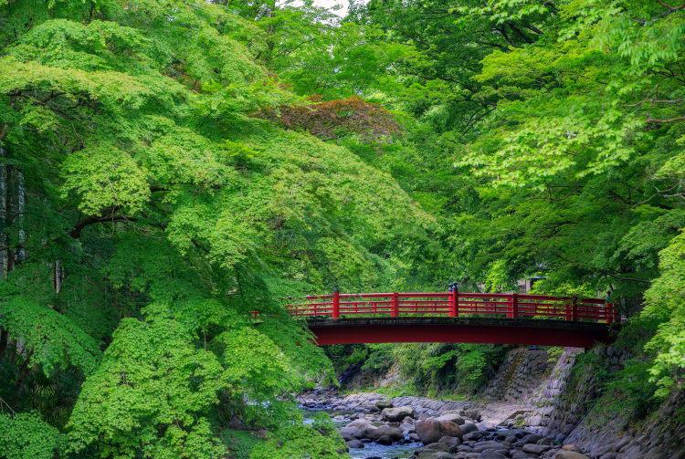 Shuzen-ji Area