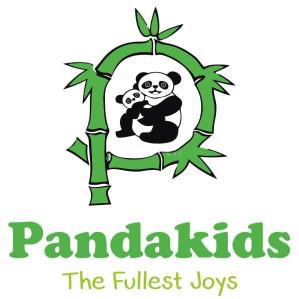 Mầm non Panda kids - Phan Kế Bình
