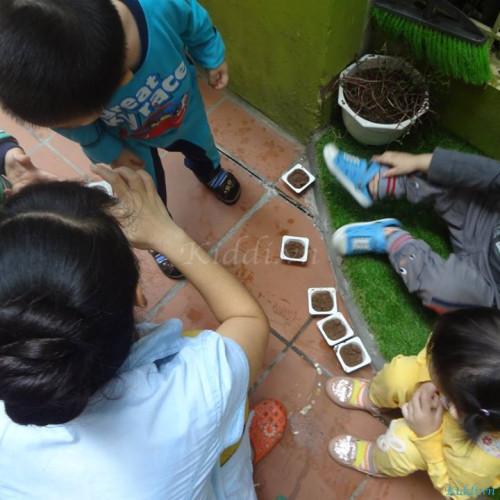 Trường mầm non song ngữ Đoàn Thị Điểm - Trung Liệt
